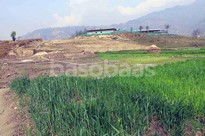 Land on Sale at Dharmasthali