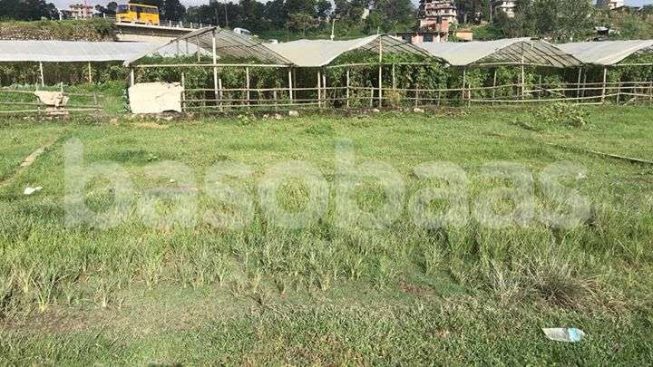 Land on Sale at Harisiddhi