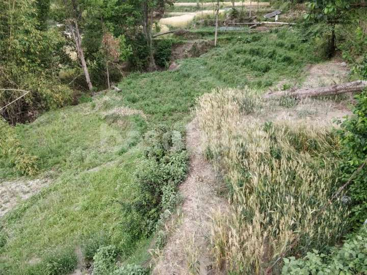 Land for Sale in Changunarayan