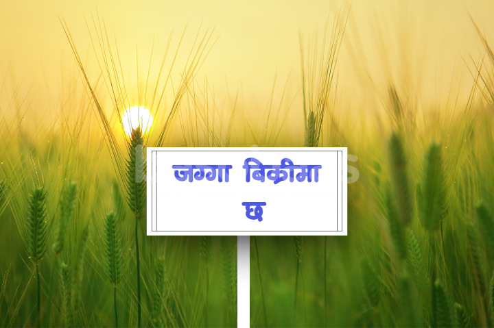 Land on Sale at Panauti