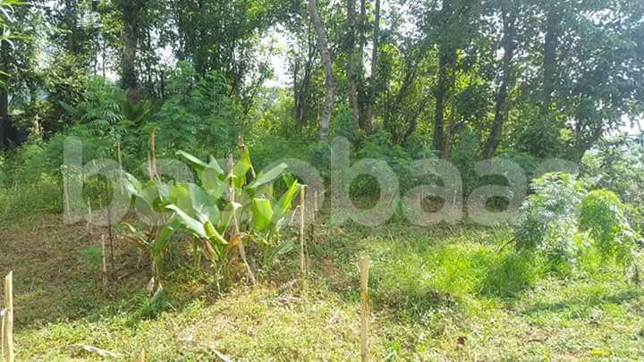 Land on Sale at Dhading