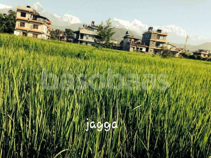 Land on Sale at Kaji Pokhari