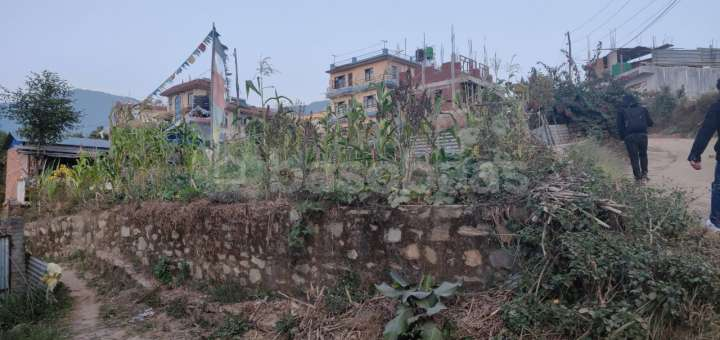 Land for Sale in Chapali