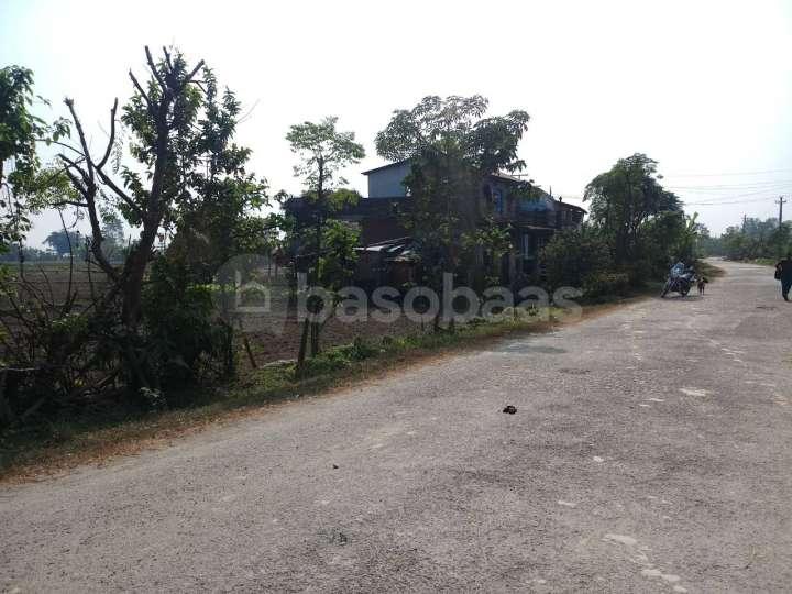 Land on Sale at Sauraha