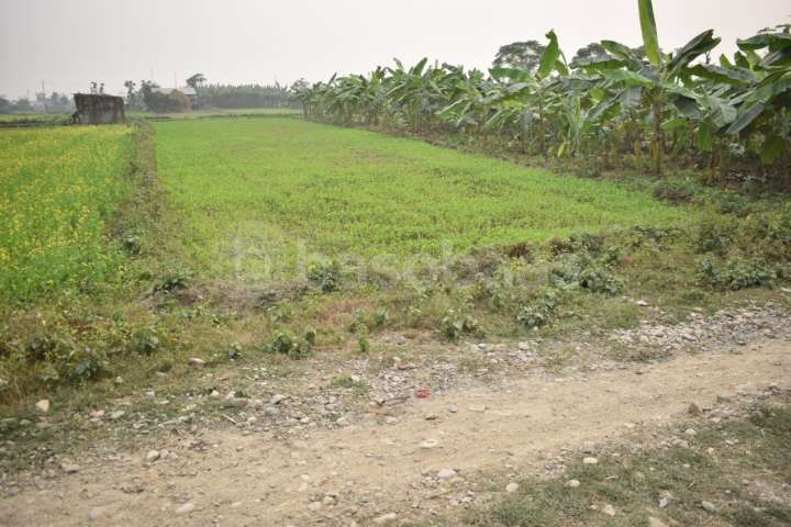 Land for Sale in Kalika Nagarpalika
