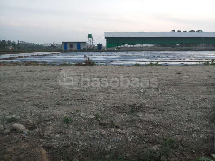Land on Sale at Taadi