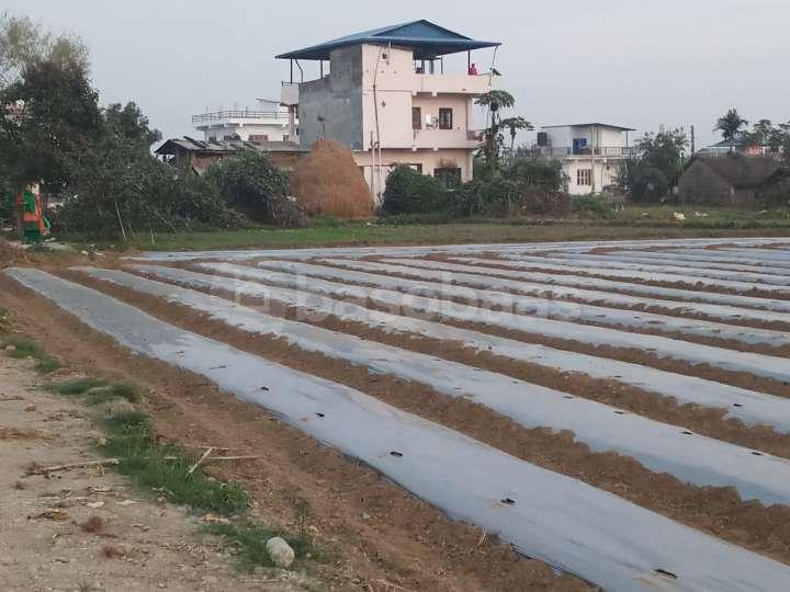 Land on Sale at Taadi