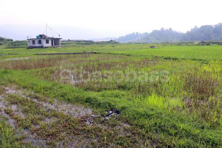Land on Sale at Gokarneshwor