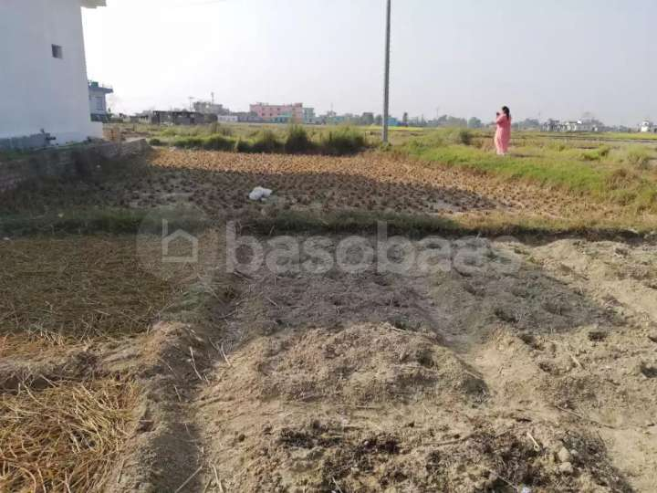 Land on Sale at Bewara, Tillotama, Nagarpalika