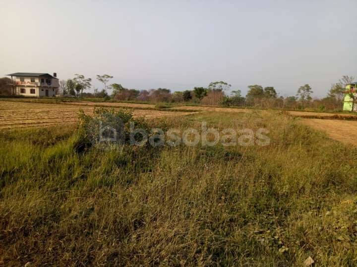Land on Sale at Chitwan