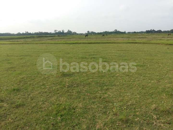 Land on Sale at Katahari