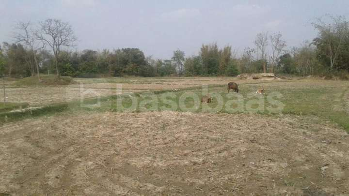 Land for Sale in Jhapa