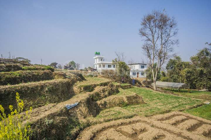 Land on Sale at Dadikot