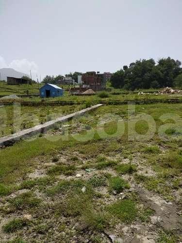 Land on Sale at Pasikot