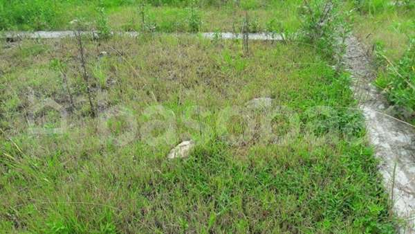 Land on Sale at Kharipati