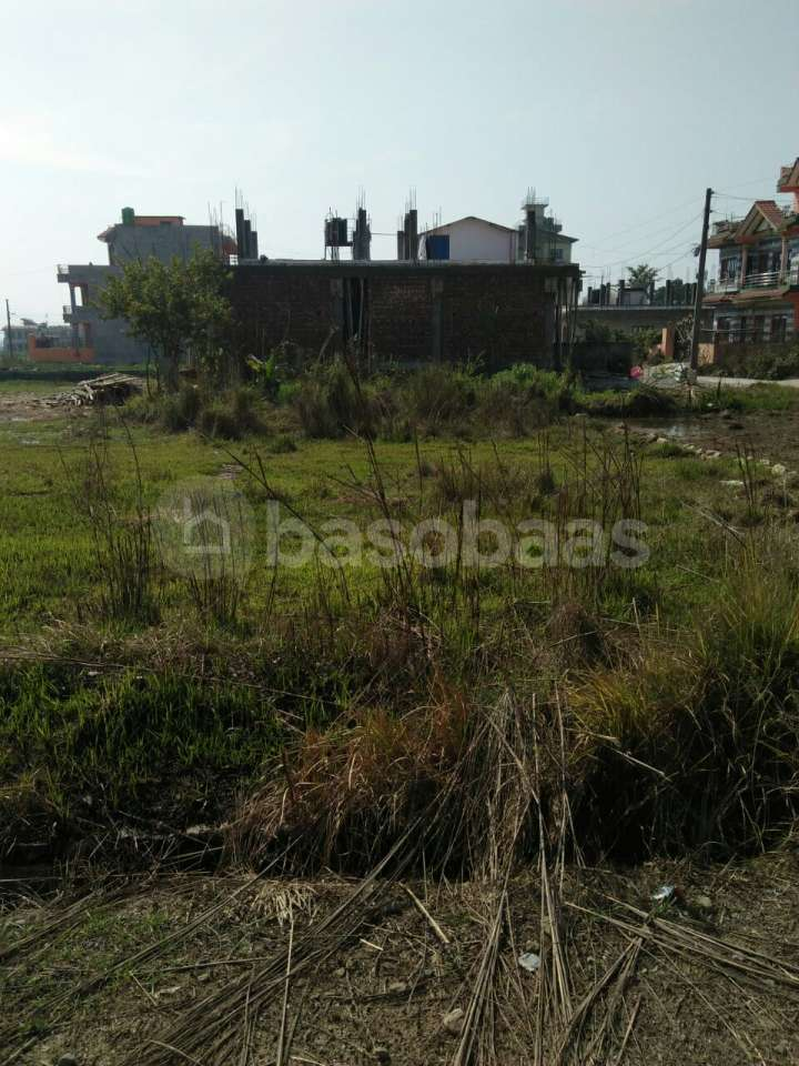 Land for Sale in Ratnanagar