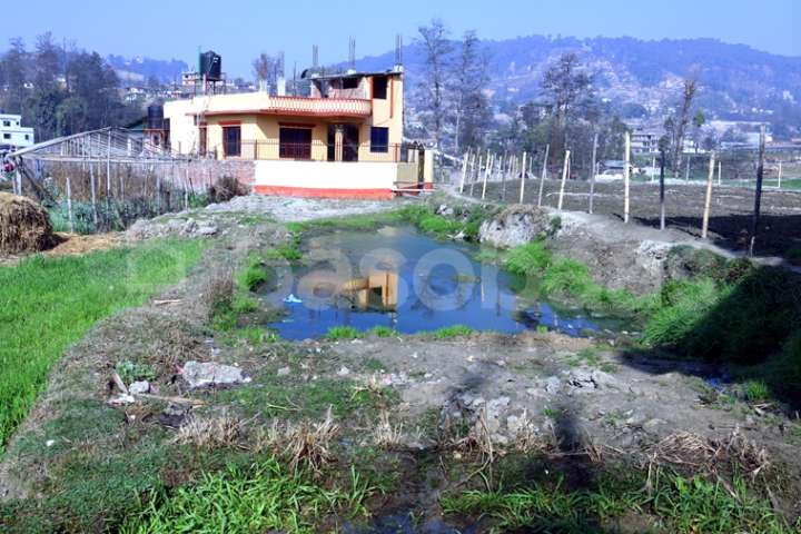 Land for Sale in Gokarneshwor