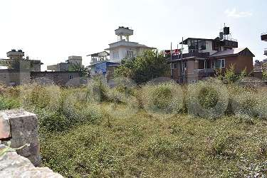 Land for Rent in Dhapasi