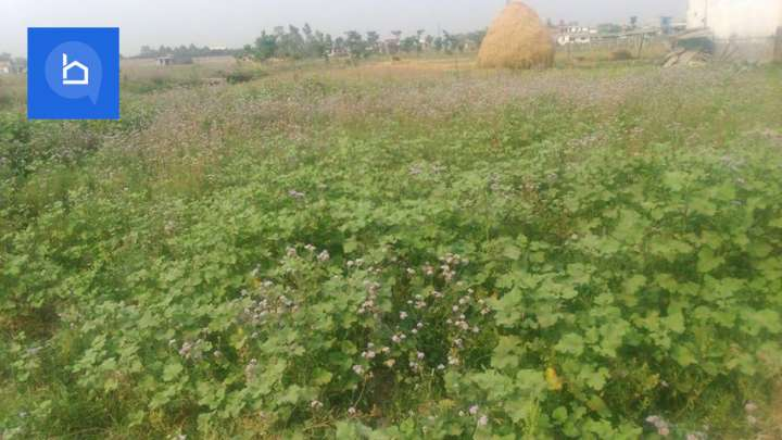Land for Sale in Itahari