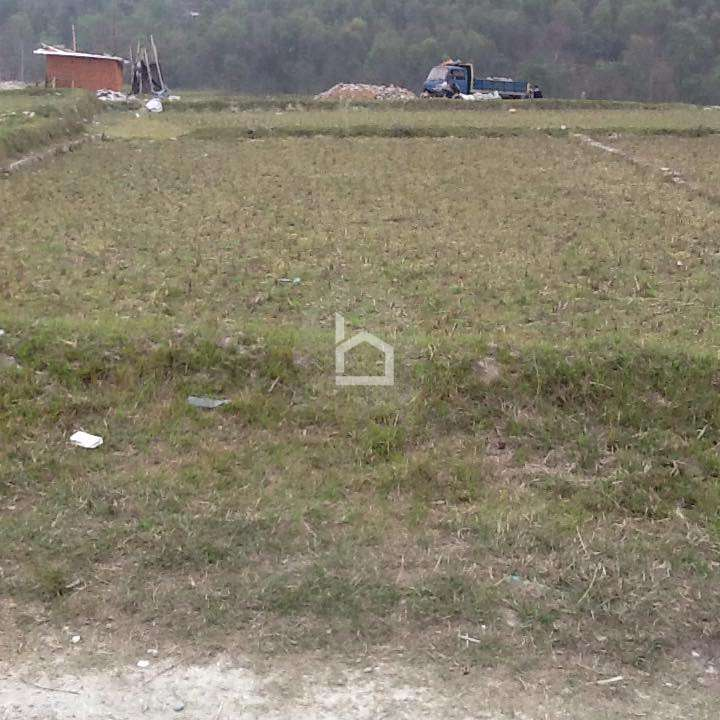 Land for Sale in Chauthe
