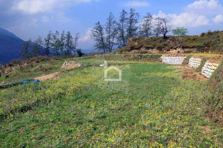 Land for Sale in Karyabinayak