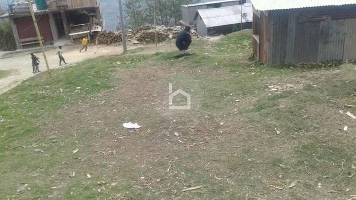 Land for Sale in Taplejung