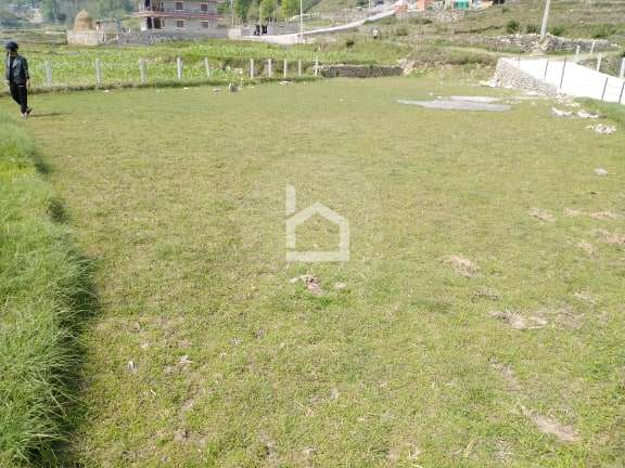 Land for Sale in Fulbari