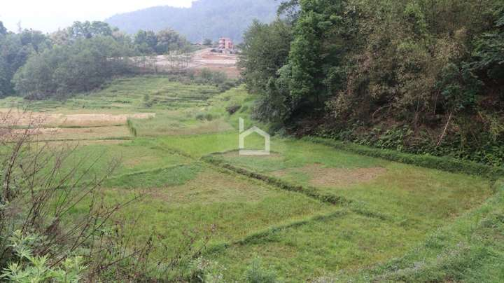 Land for Sale in Chapagaun