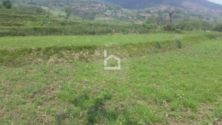Land for Sale in Dakshinkali