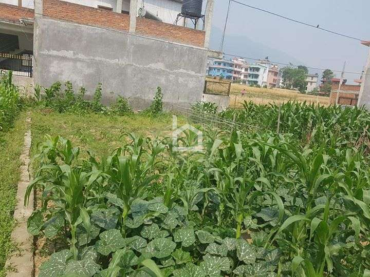 Land for Sale in Gurujudhara