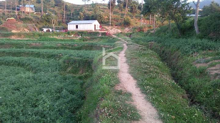 Land for Sale in Thaha Nagarpalika