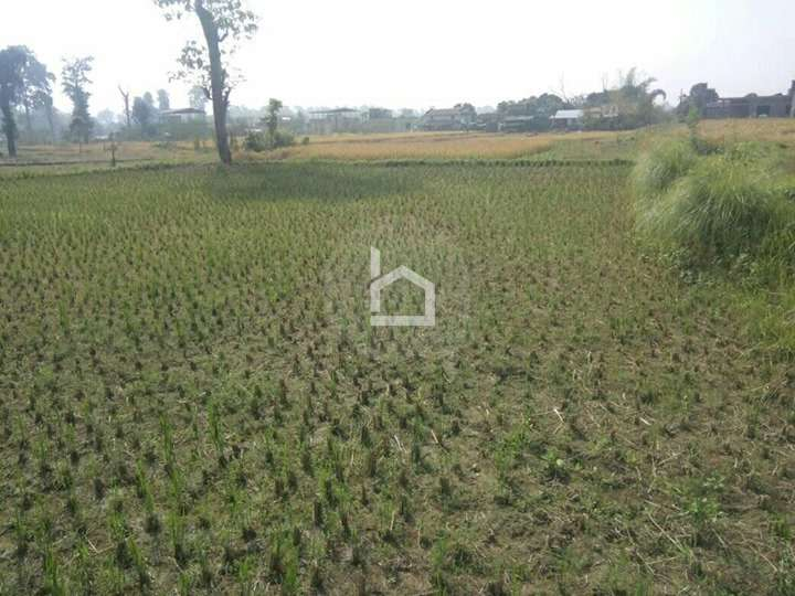 Land for Sale in Khaireni