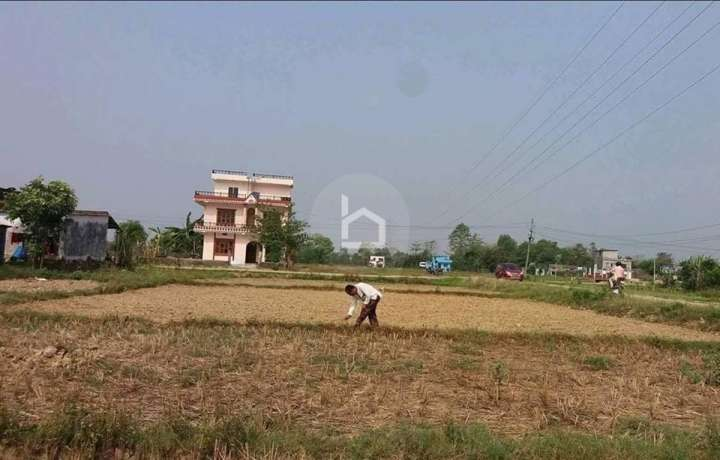 Land for Sale in Siyari