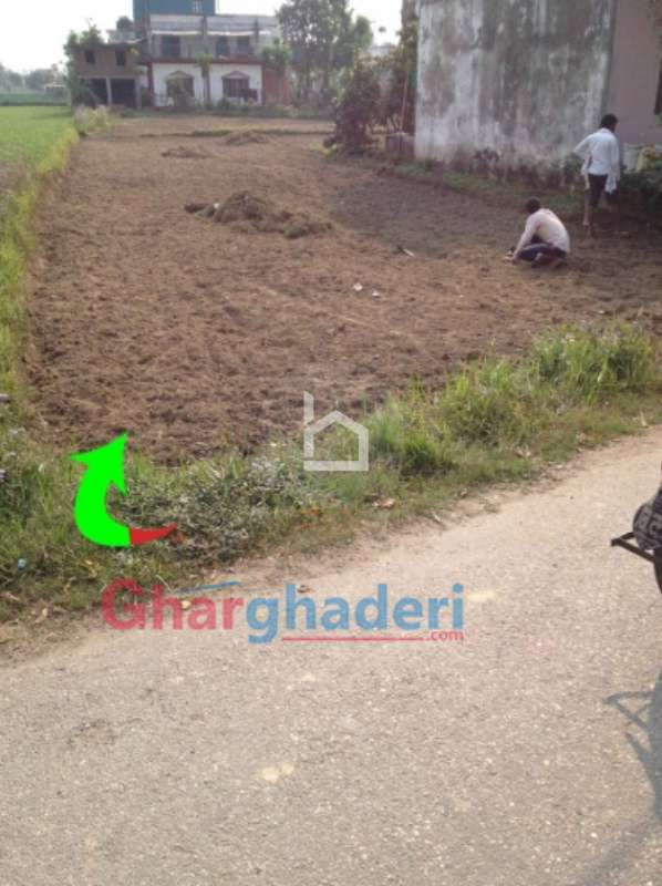 Land for Sale in Taadi