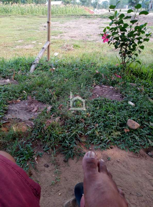 Land for Sale in Chitrawan