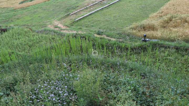 Land for Sale in Bajrabarahi