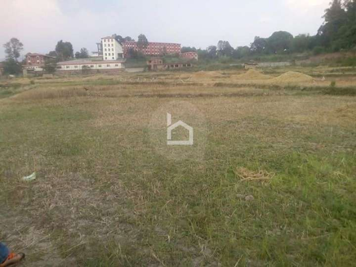 Land for Sale in Sallaghari