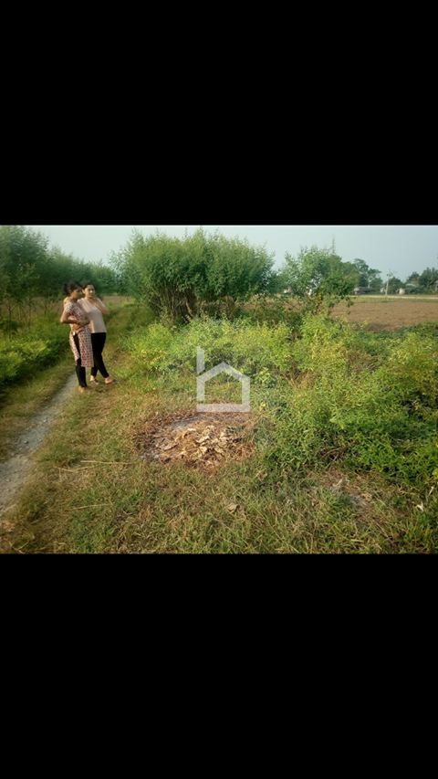 Land for Sale in Narayanpur