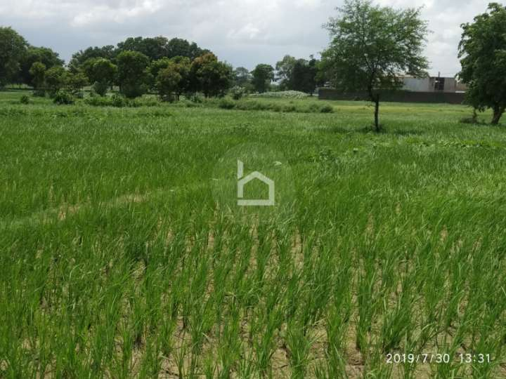 Land for Sale in Bhairahawa
