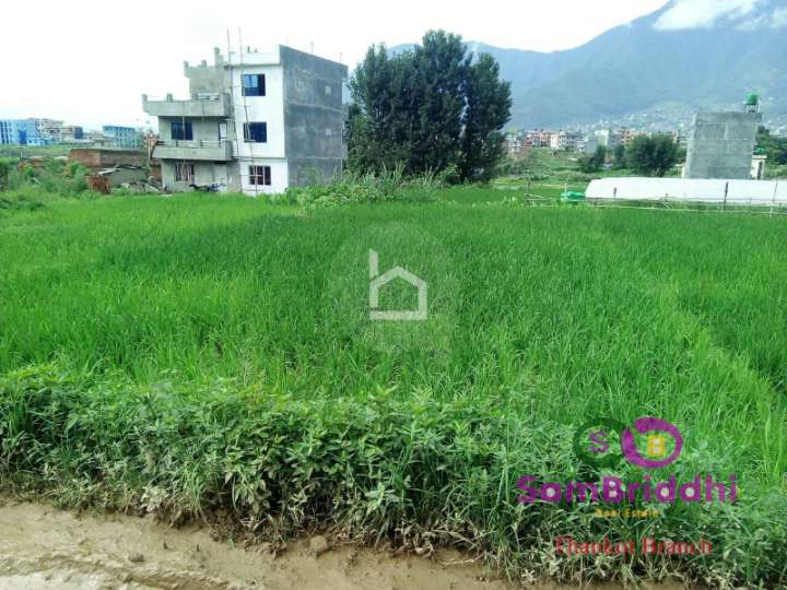 Land for Sale in Balambu