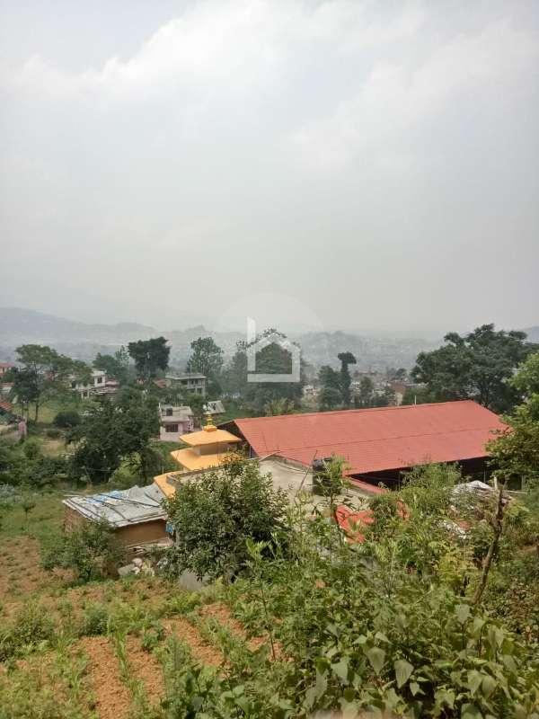 Land for Sale in Naya Bazar