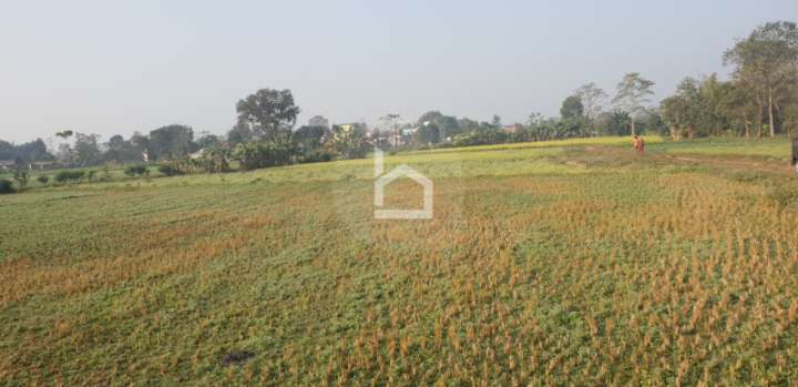 Land for Sale in Khairahani
