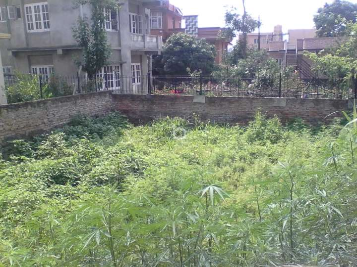 Land for Sale in Chakupat