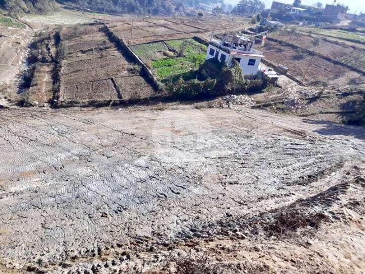 Land for Sale in Jorpati