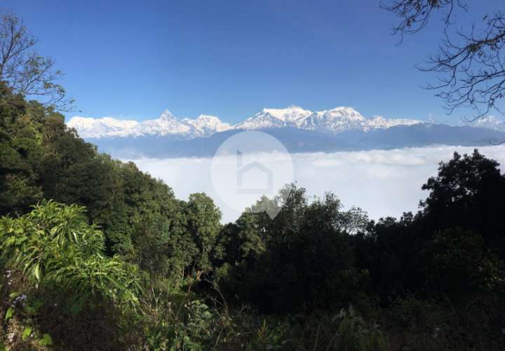 Land for Sale in Nirmal Pokhari