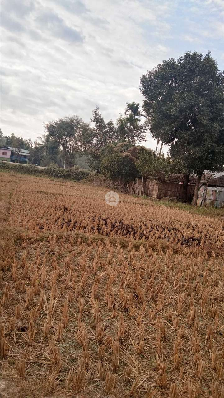 Land for Sale in Damak