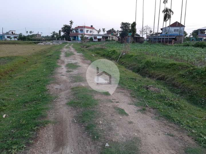 Land for Sale in Bhadrapur