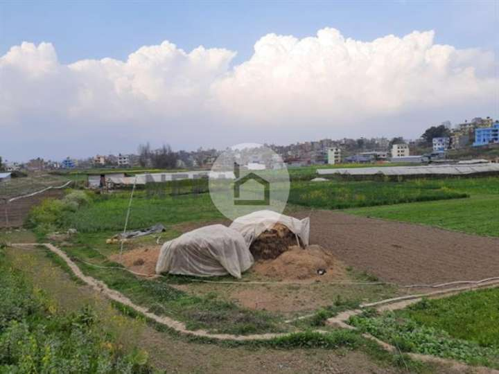 Land for Sale in Sano Gaun