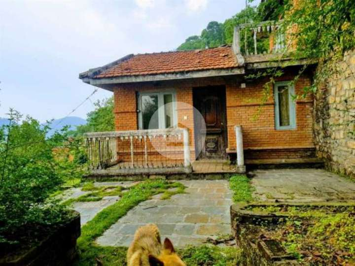 Business for Sale in Duwakot