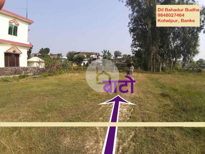 Land for Sale in Kohalpur